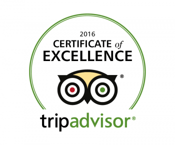 Trip Advisor Superior Service