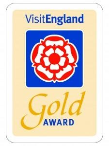 Gold Award (003)